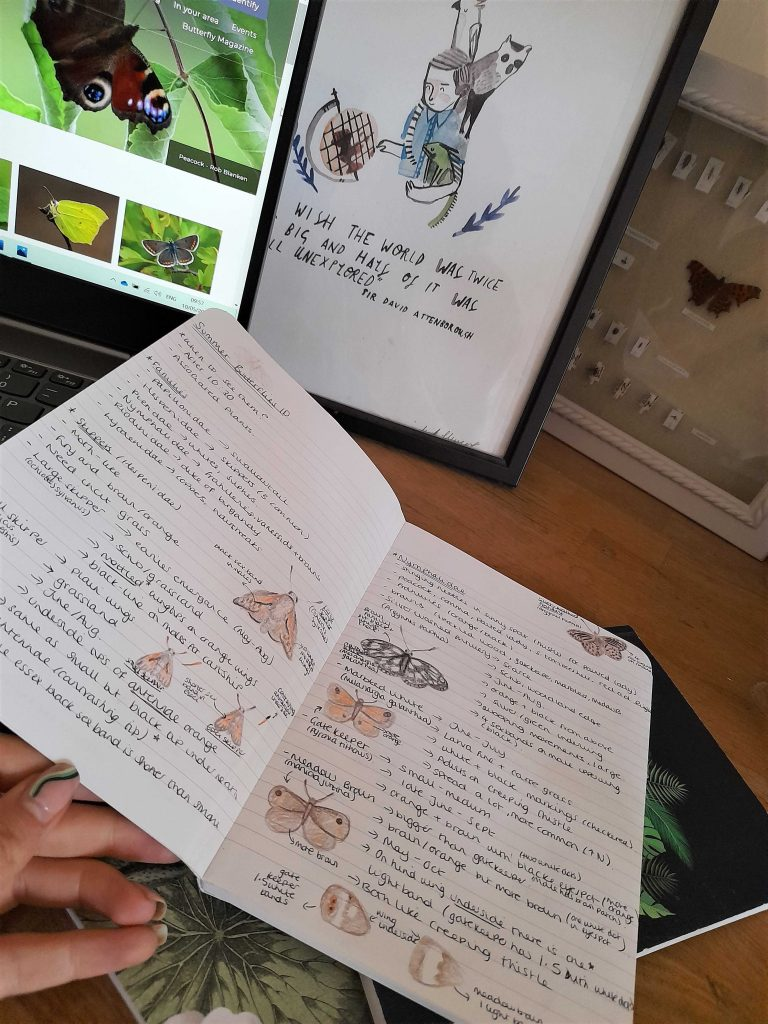 Wildlife journal showing butterflies