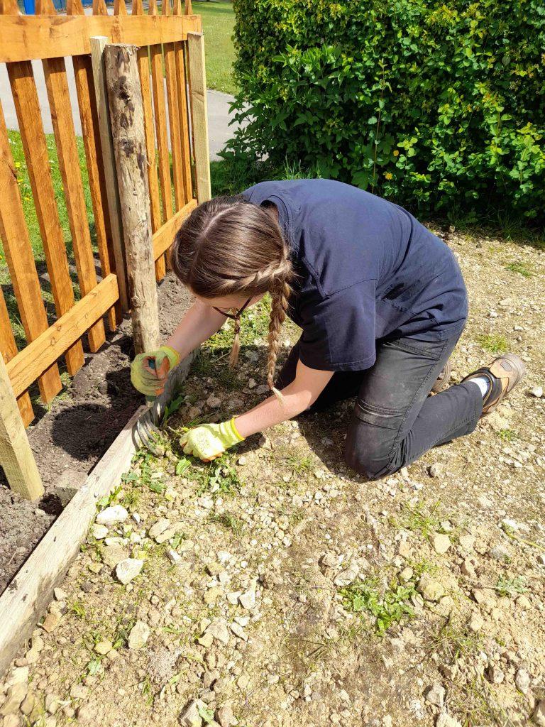 Practical conservation task